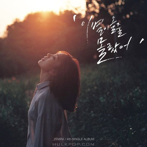 ZEMINI – Don't Say Goodbye – Single