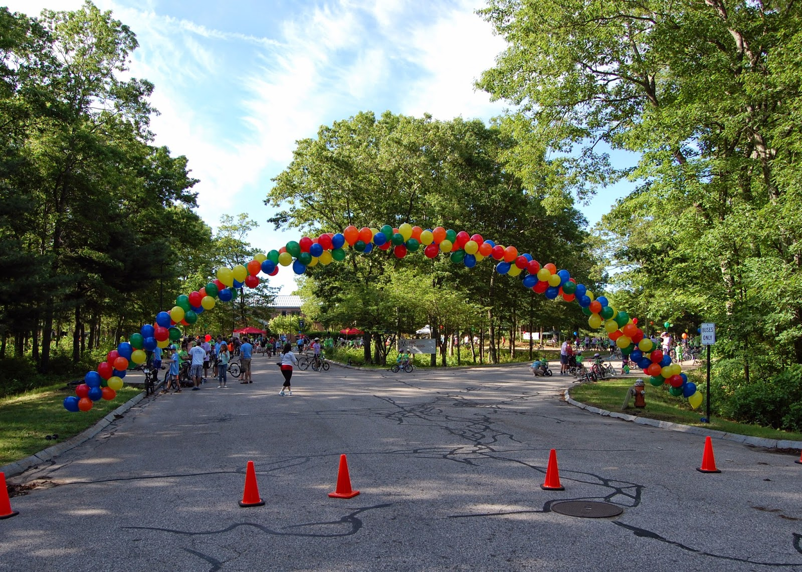 balloon arch for starting line