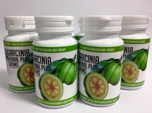 DZ Garcinia Herbal Plus Body Slimming Kurus Badan Langsing ...