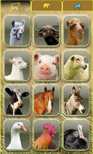 Game Android anak AniWorld free animal
