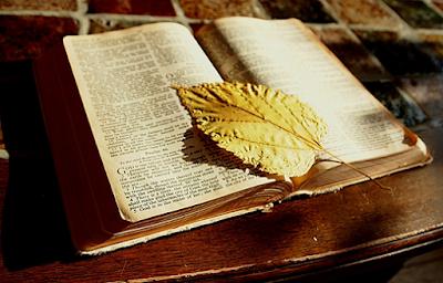 Renungan Harian Katolik Jumat, 01 September 2017