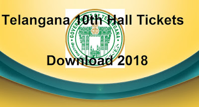 Manabadi TS 10th Hall Tickets 2018 Download, Schools9 Telangana SSC 2018 Hall Tickets