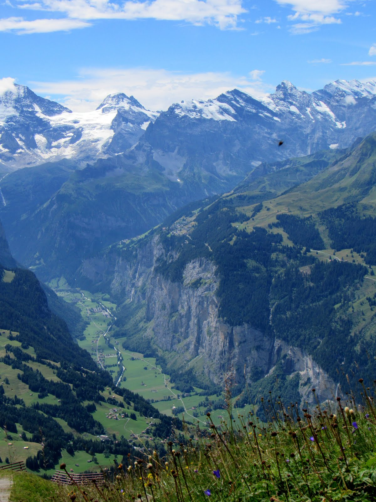 A Naturalist Abroad: Travels in Switzerland