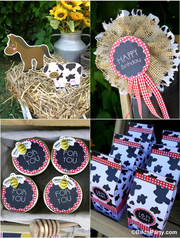 Farm and Barnyard Birthday Party Favors - BirdsParty.com