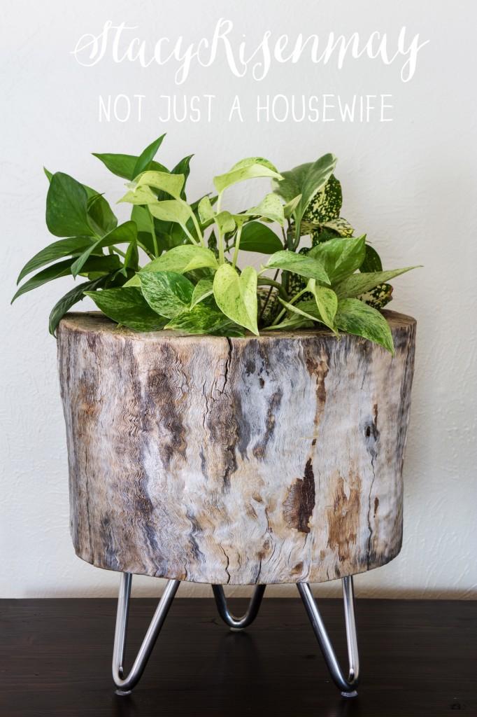 Decoracin estilo rstico con ramas y troncos de rbol
