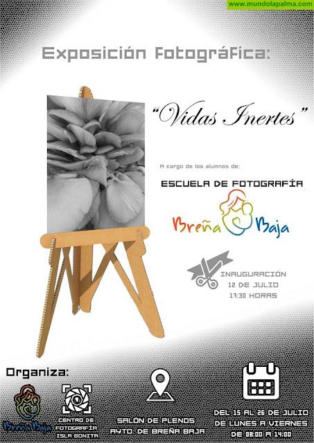 """SANTA ANA 2019: exposición """"Vidas Inertes"""""""