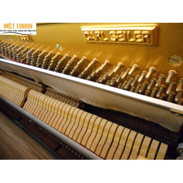 Cửa hàng bán đàn piano Carl seiler ở Tphcm