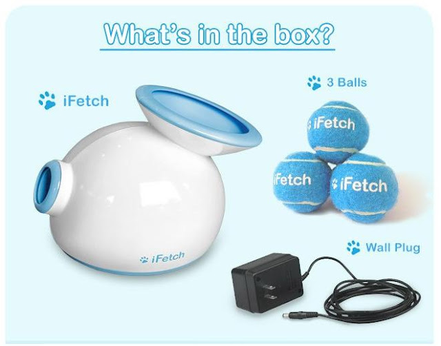 Qué incluye la caja del iFetch