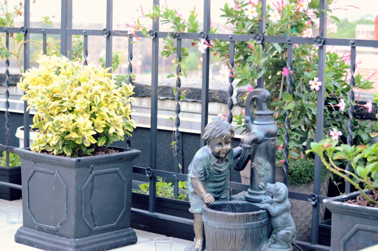 Penthouse Terrace Oasis Fountain + 10 Best Container Plants For Rooftop Gardening