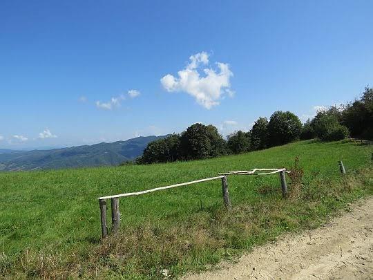 Z lewej za drzewami widać Lubań.