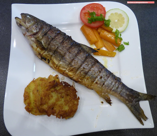 fischiscooking, saibling, grill
