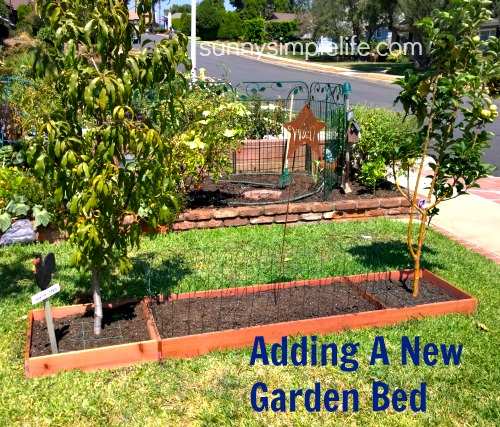 southern california garden, making a raised bed garden