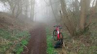 Bridleway through the woods in woolsthorpe by belvoir - by: © Paul c Walton