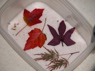 Быстро и не очень высушить листья для поделок и аппликацмй - советы и рекомендации http://prazdnichnymir.ru/