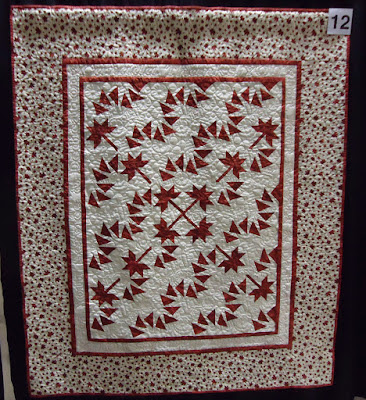 Quilt #12 of the Quilts of Valour Challenge