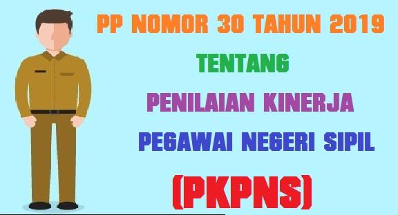 PP Nomor 30 Tahun 2019 Tentang Penilaian Kinerja Pegawai Negeri Sipil (PKPNS)