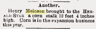 Henry Meinzen's 12' corn stalk mentioned in Steubenville Herald-Satr, September 7, 1899
