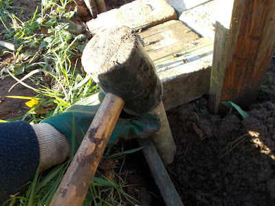 Using a mallet to hammer in the pegs to the ground How to keep weeds out of your allotment 80 Minute Allotment Green Fingered Blog