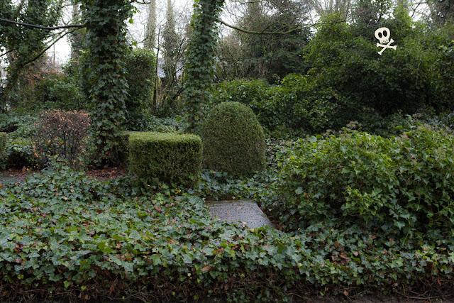Lápidas que asoman entre un mar verde en Huis te Vraag