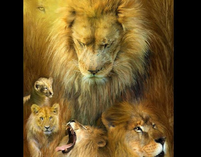 My Lions by Deborah Waldron Fry