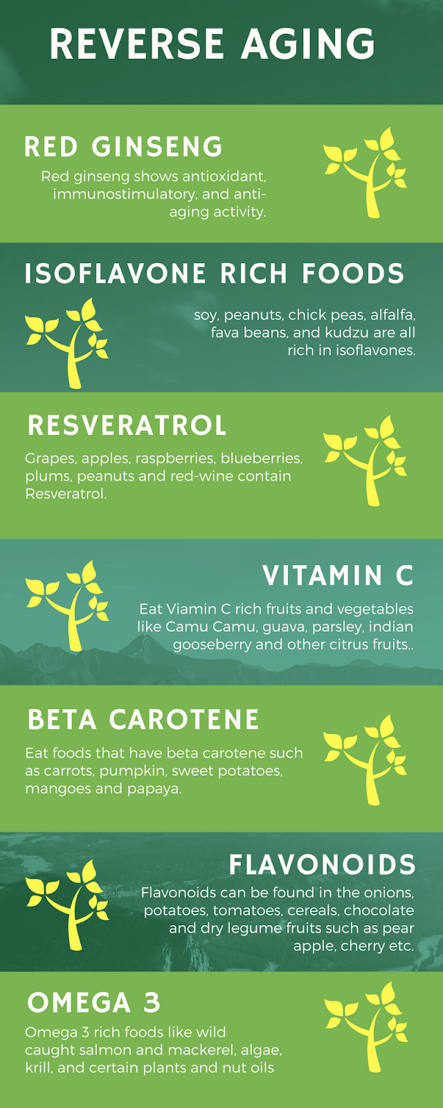 These Foods Can Reverse Aging