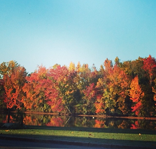 Beautiful fall day in Alabama!