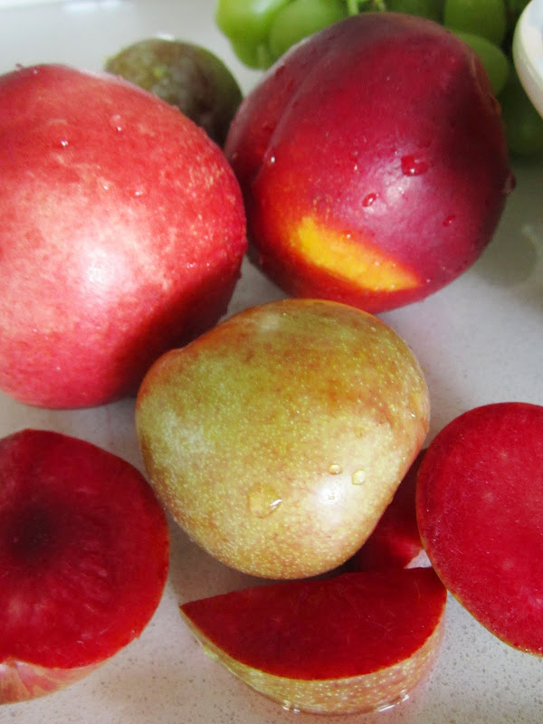 Close up of the cut pluots