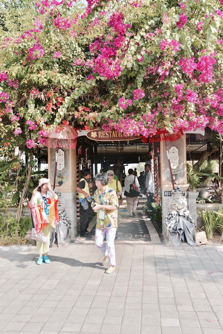 Ubud atrakcje, Ubud na Bali, małpi las w Ubud, Bali co zobaczyć, Bali Indonezja, Ubud restauracja, Ubud bali wycieczka, Ubud pogoda, Ubud pałac, Ubud małpy, Bali co zobaczyć,
