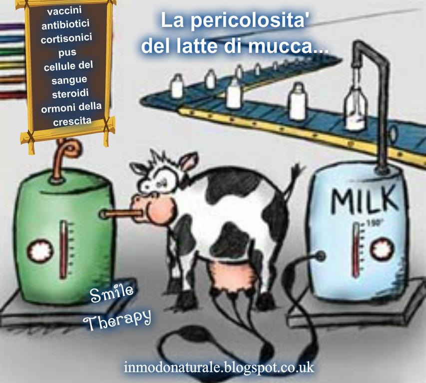 In Modo Naturale: La Pericolosita' Del Latte Di Mucca