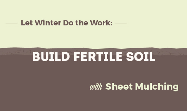Let Winter Do the Work: Build Fertile Soil with Sheet Mulching