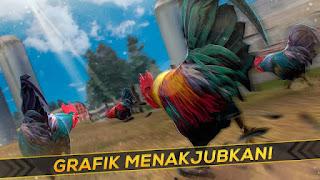 Game Balap Ayam Jago APK v1.6.0 Mod Update Versi Terbaru