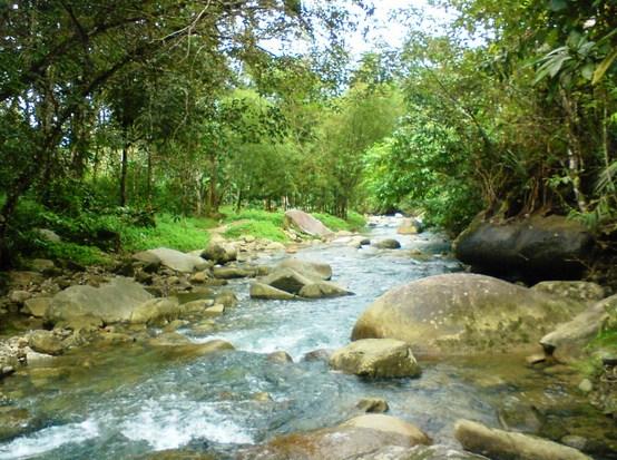 Definisi Pengertian Sungai, Alur dan Muara Sungai