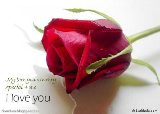 red rose i love you wallpaper - photo #5