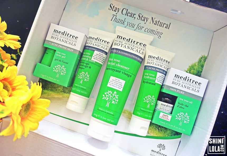 [REVIEW] MEDITREE TEA TREE RANGE