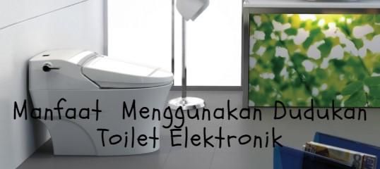 Manfaat Menggunakan Dudukan Toilet Elektronik