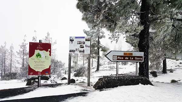 Se puede subir este viernes a la cumbre  de Gran Canaria,menos al Pico de Las Nieves