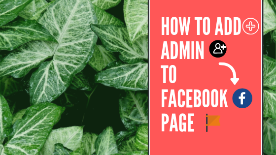 Make Admin On Facebook<br/>