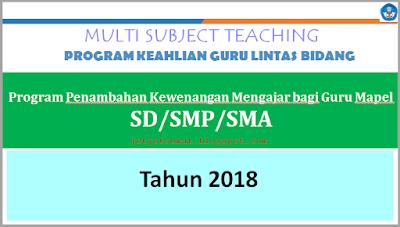 Program Multi Subject Teaching/Guru Lintas Bidang Kemdikbud Tahun 2018