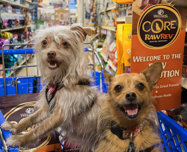 Bailey and Jada and PetSmart ready to try some freeze-dried raw and kibble dog food