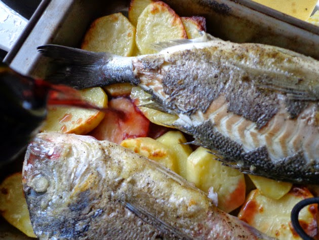 Laka kuharica> Gilt-head bream with potatoes and zucchini. Crunchy, baked potatoes and grilled zucchini complement this tasty white fish.
