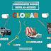 Consonantes dobles en español- (Nivel A1)