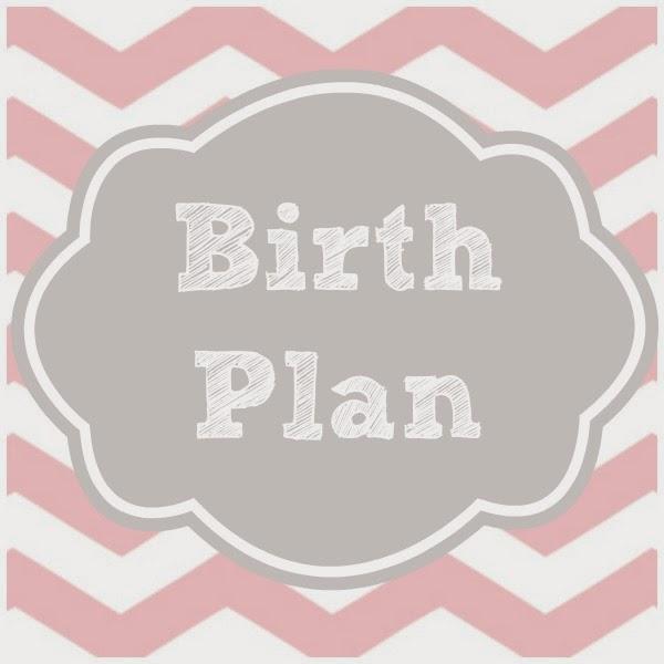 charity u0026 39 s crafty corner  the birth plan