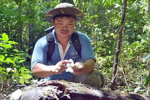 Gia Lai: Người mang lan về rừng