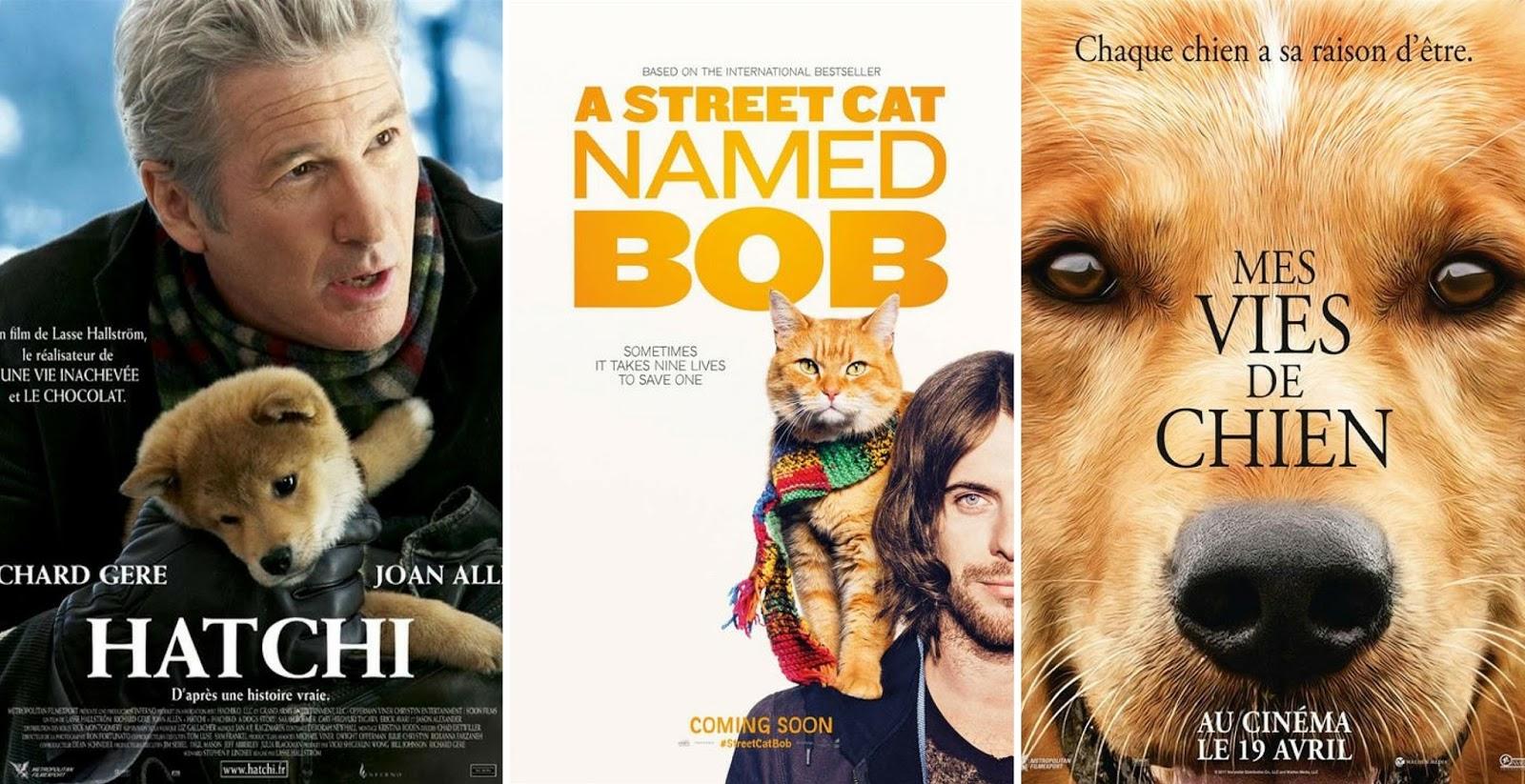 Cinéma : 3 films bouleversants avec des animaux