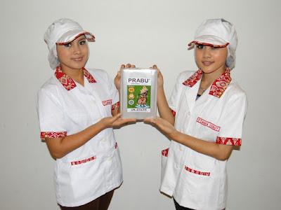 Image-product-catalog-naga-semut
