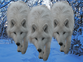 Winter Wolves outside Phandalin