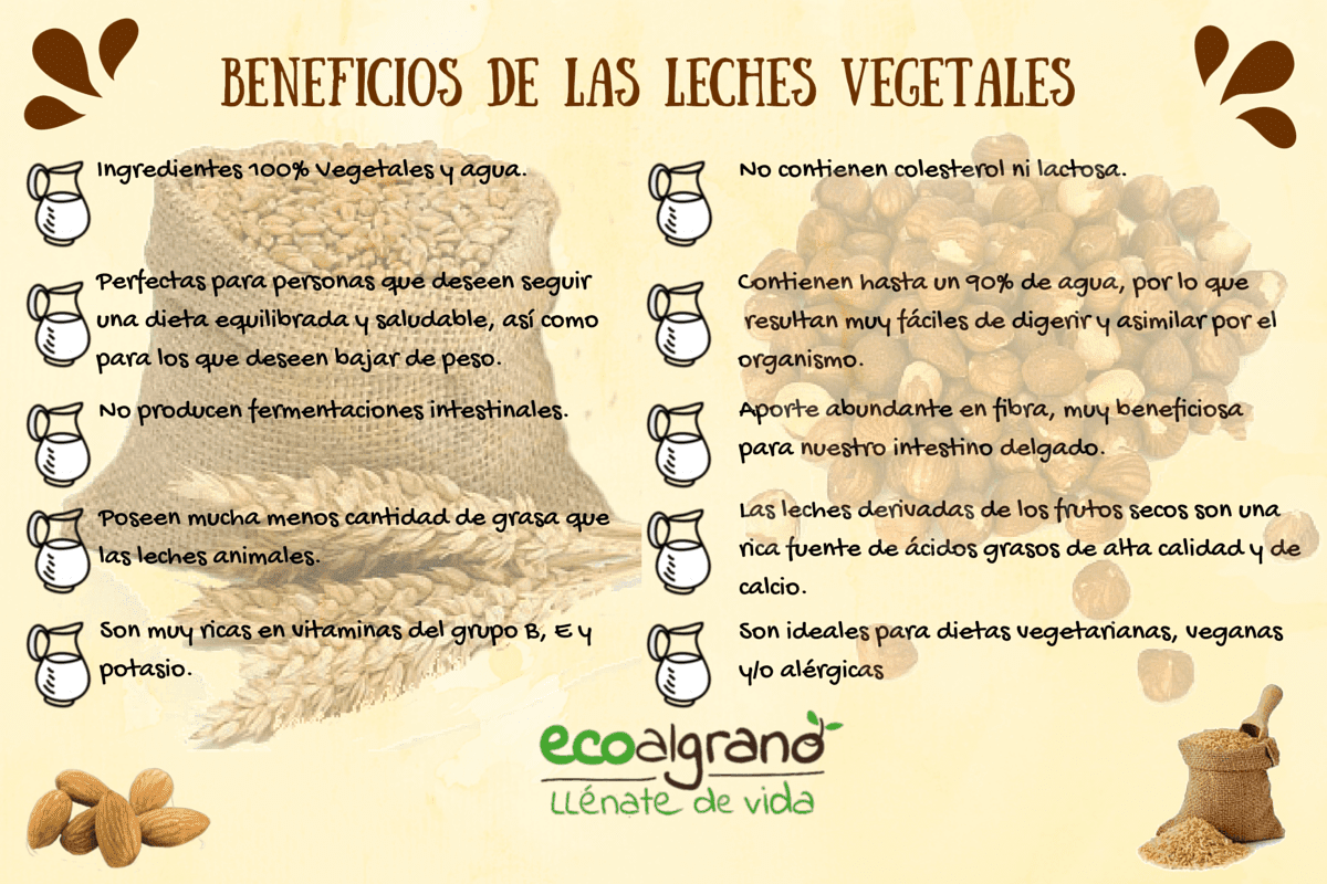 beneficios, leches, vegetales, semillas, saludable.