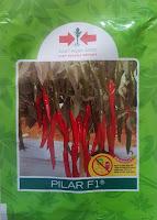 cabe pilar,benih cabe,cabe merah,cap panah merah,panah merah,bibit cabe