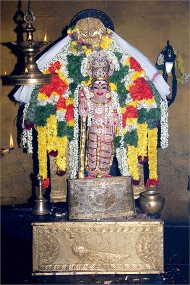 Main Deity Sri Bala Dhandayuthapani