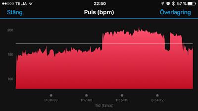 puls%2Bsthlm%2Bmarathon.PNG